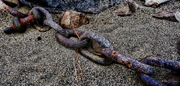 Old chain holding logs together down by the river